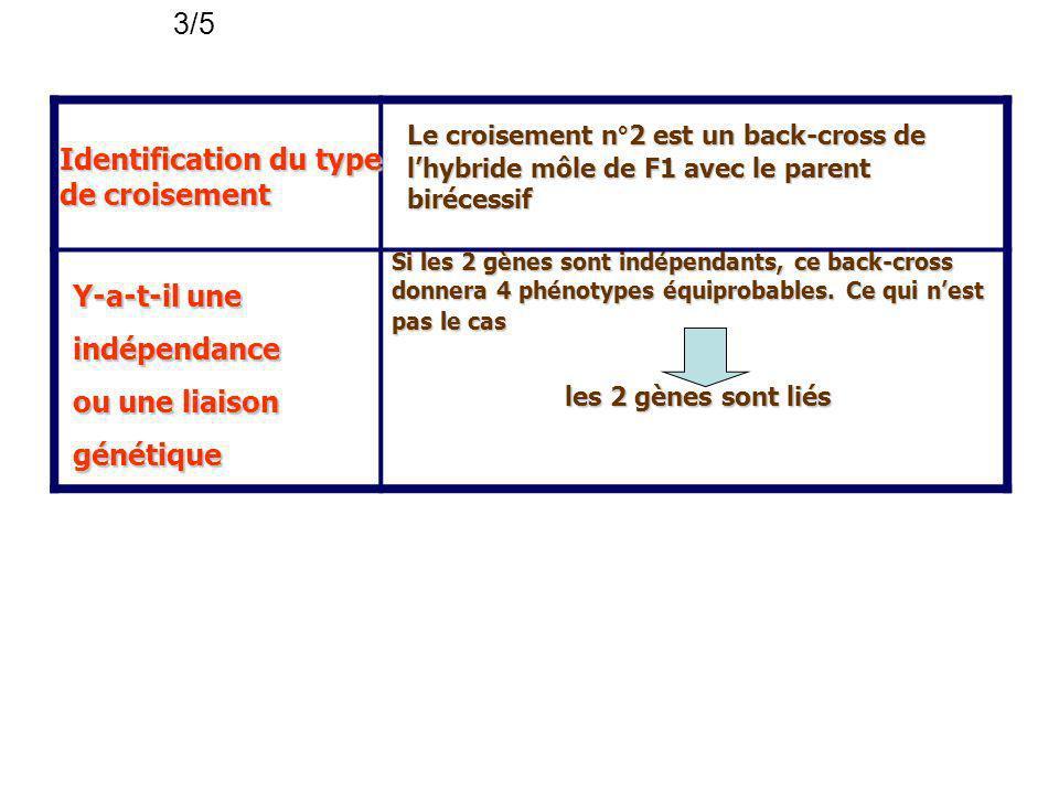Identification du type de croisement Le croisement n°2 est un back-cross de lhybride môle de F1 avec le parent birécessif Y-a-t-il une indépendance ou