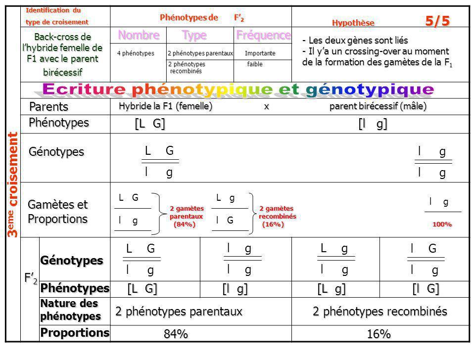 3 e m e c r o i s e m e n t L G l g L G l gl G L g l g L G l g L g l g l G l gPhénotypes Nature des phénotypes Identification du type de croisement Ba