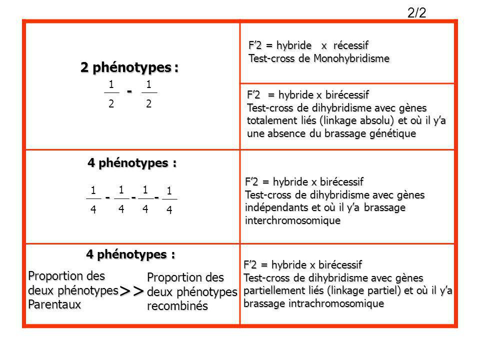 1 2 1 2 1 4 1 4 1 4 1 42 phénotypes : - F2 = hybride x récessif Test-cross de Monohybridisme F2 = hybride x birécessif Test-cross de dihybridisme avec