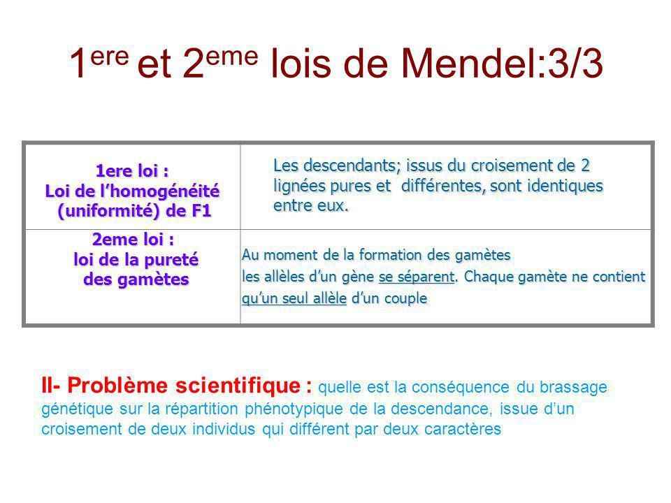 1 ere et 2 eme lois de Mendel:3/3 1ere loi : Loi de lhomogénéité (uniformité) de F1 (uniformité) de F1 Les descendants; issus du croisement de 2 ligné