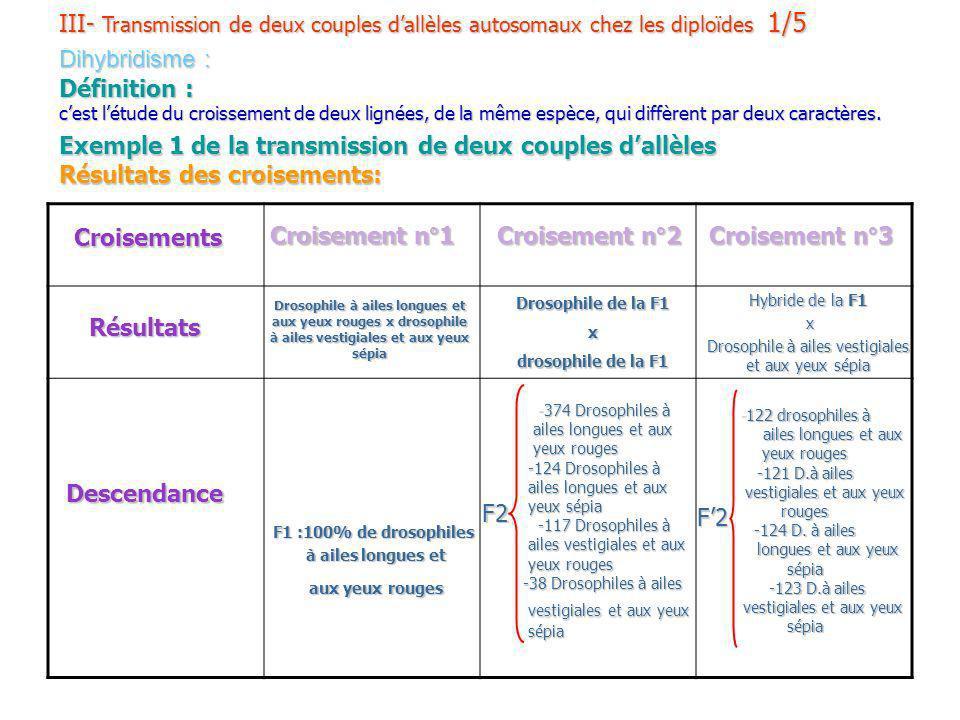 III- Transmission de deux couples dallèles autosomaux chez les diploïdes 1/5 Dihybridisme : Définition : cest létude du croissement de deux lignées, d