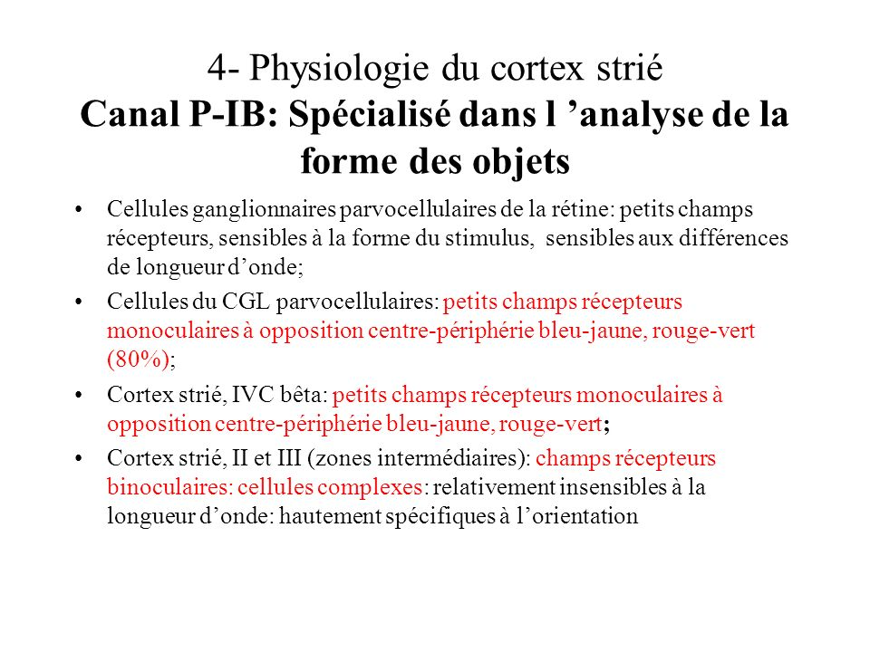 4- Physiologie du cortex strié Canal P-IB: Spécialisé dans l analyse de la forme des objets Cellules ganglionnaires parvocellulaires de la rétine: pet