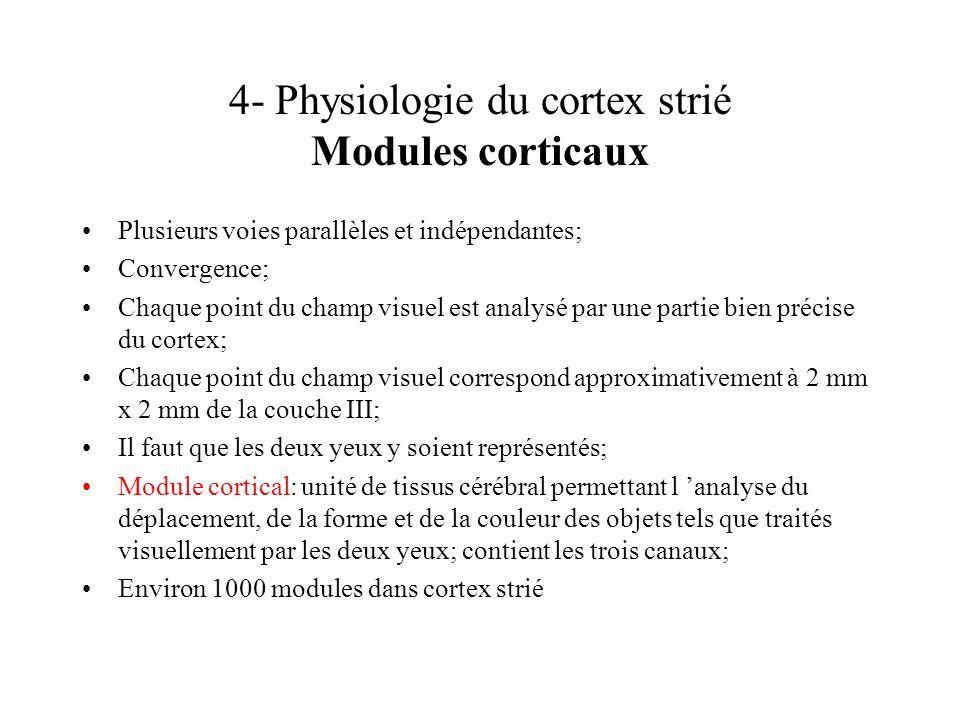 4- Physiologie du cortex strié Modules corticaux Plusieurs voies parallèles et indépendantes; Convergence; Chaque point du champ visuel est analysé pa