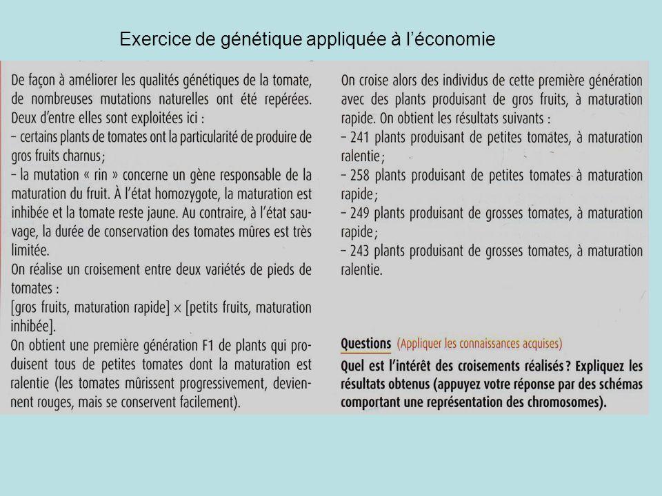Exercice de génétique appliquée à léconomie