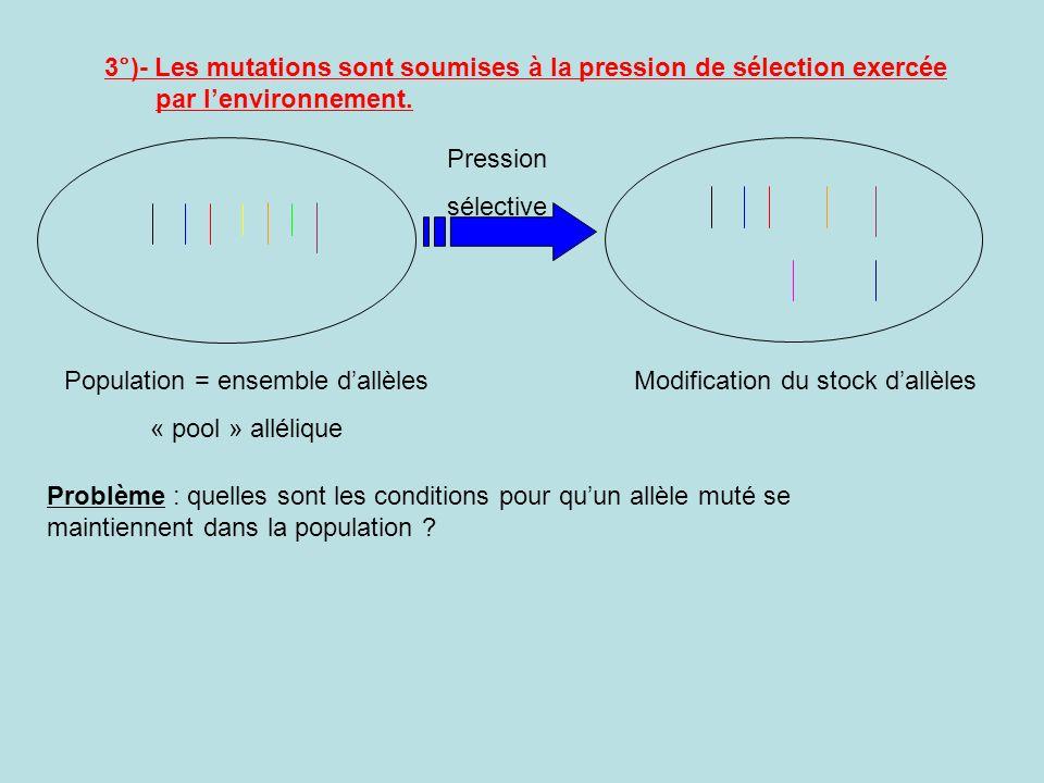 3°)- Les mutations sont soumises à la pression de sélection exercée par lenvironnement.