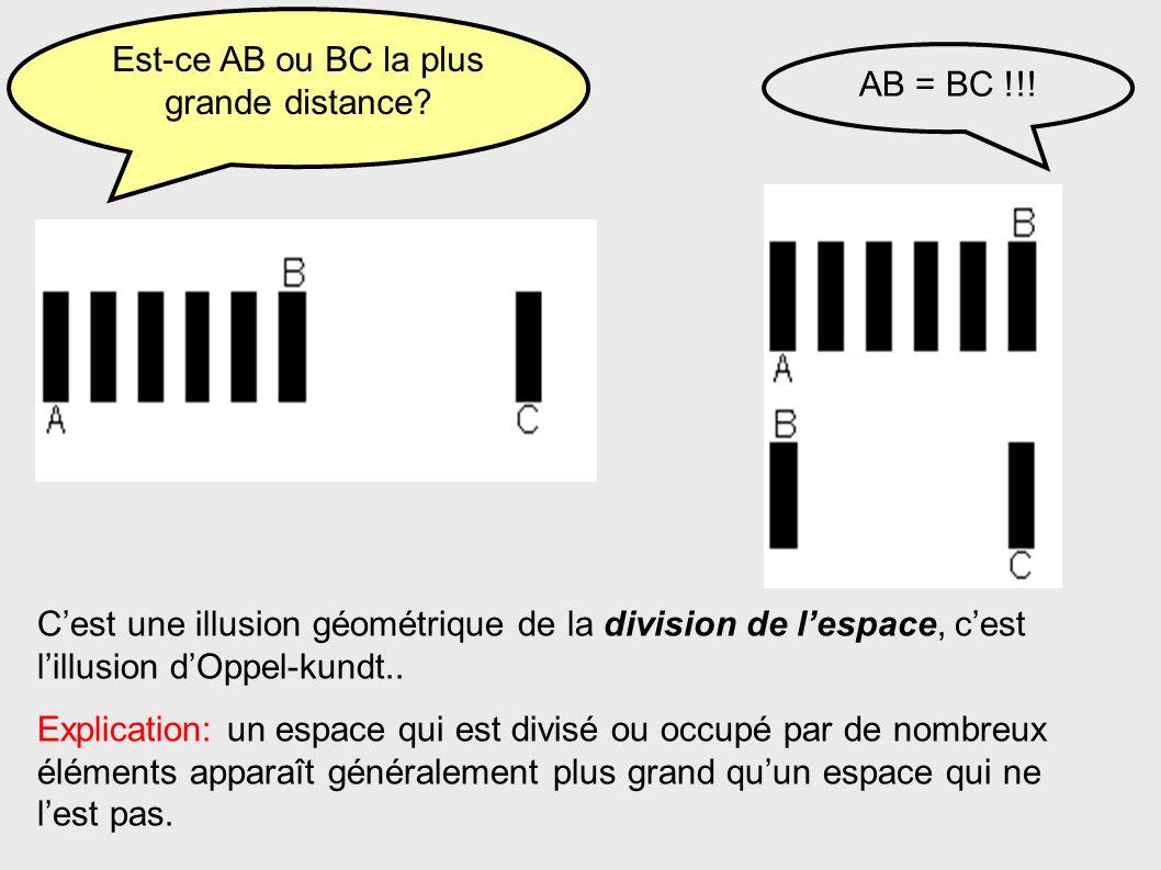 Est-ce AB ou BC la plus grande distance? AB = BC !!! Cest une illusion géométrique de la division de lespace, cest lillusion dOppel-kundt.. Explicatio