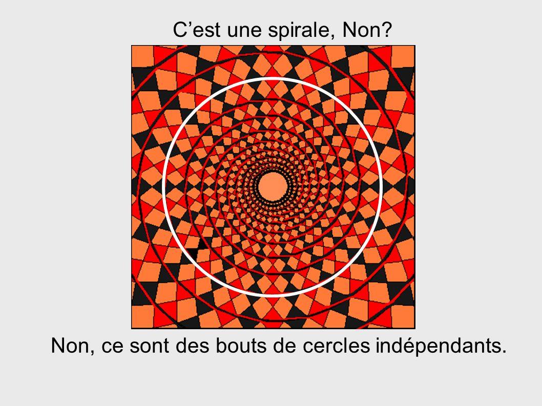 Cest une spirale, Non? Non, ce sont des bouts de cercles indépendants.