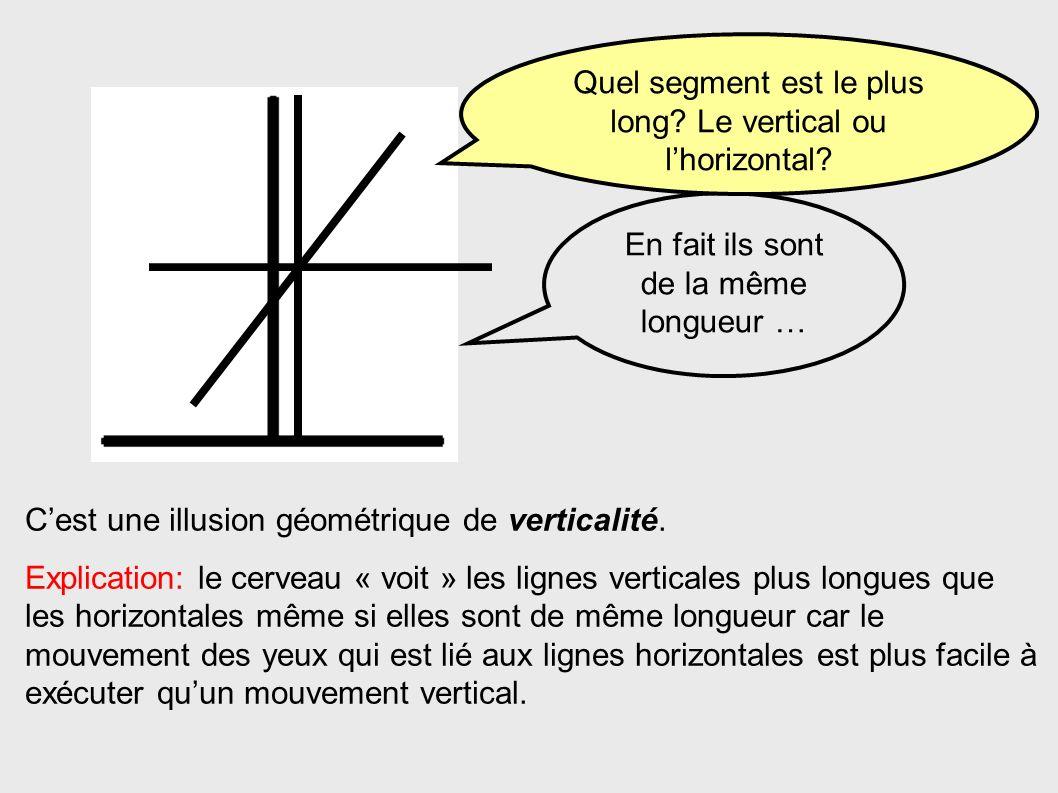 Cest une illusion géométrique de verticalité. Explication: le cerveau « voit » les lignes verticales plus longues que les horizontales même si elles s