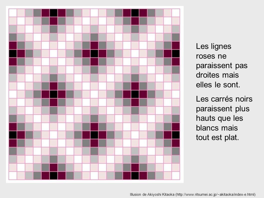 Illusion de Akiyoshi Kitaoka (http://www.ritsumei.ac.jp/~akitaoka/index-e.html) Les lignes roses ne paraissent pas droites mais elles le sont. Les car
