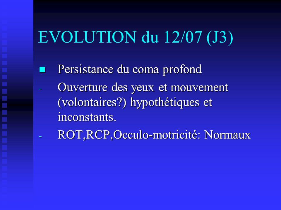 EVOLUTION du 12/07 (J3) Persistance du coma profond Persistance du coma profond - Ouverture des yeux et mouvement (volontaires?) hypothétiques et inconstants.