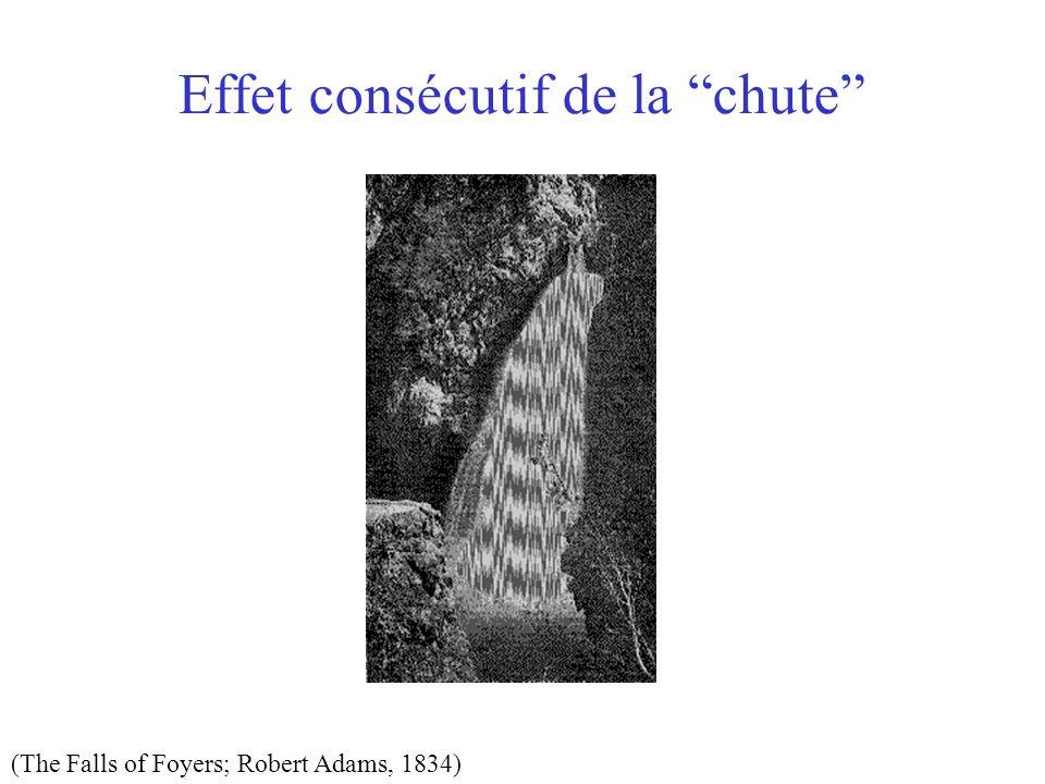 Effet consécutif de la chute (The Falls of Foyers; Robert Adams, 1834)