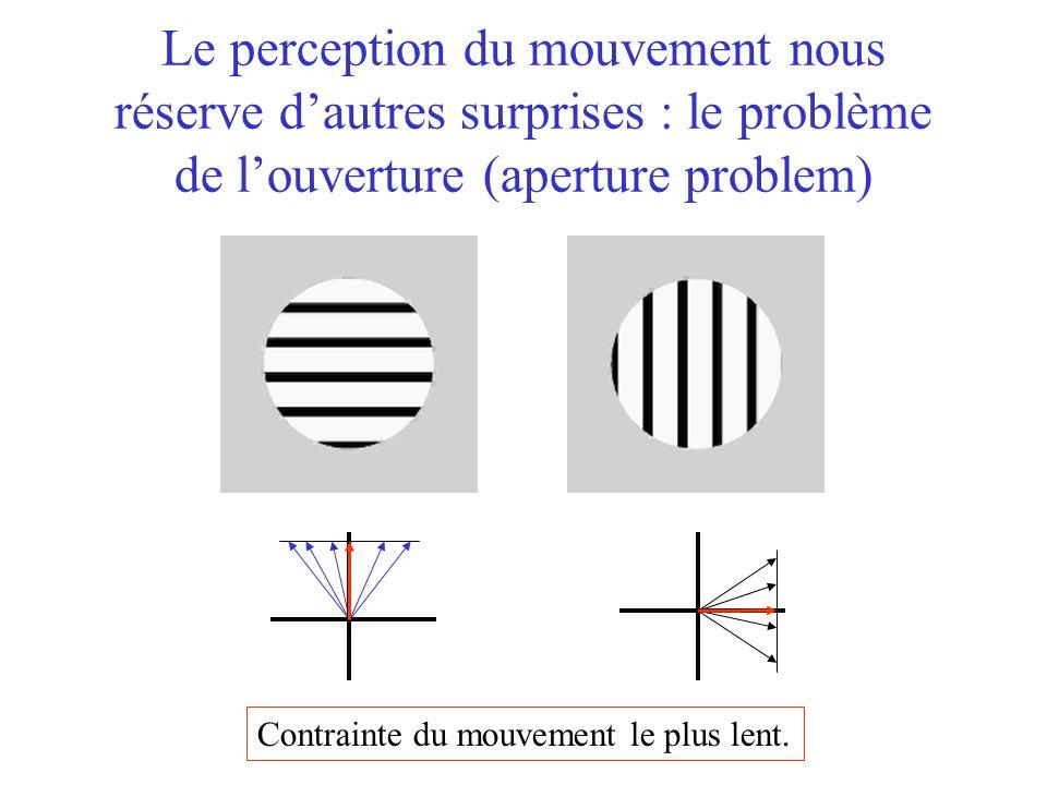 Le perception du mouvement nous réserve dautres surprises : le problème de louverture (aperture problem) Contrainte du mouvement le plus lent.