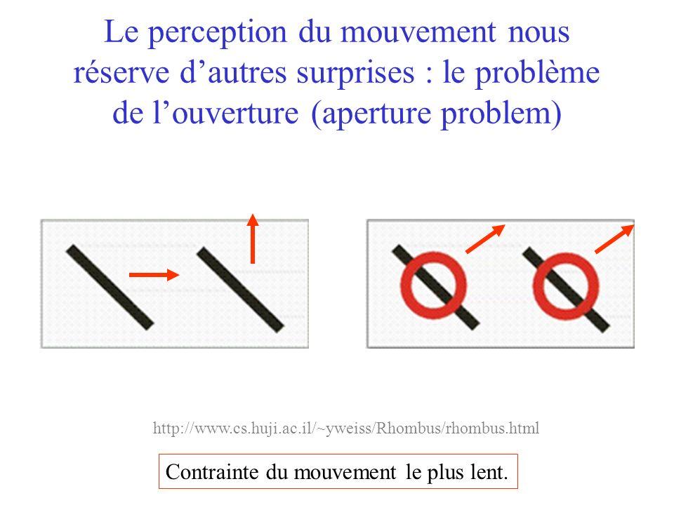 Le perception du mouvement nous réserve dautres surprises : le problème de louverture (aperture problem) Contrainte du mouvement le plus lent. http://