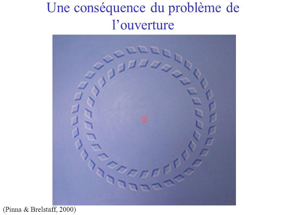 Une conséquence du problème de louverture (Pinna & Brelstaff, 2000)