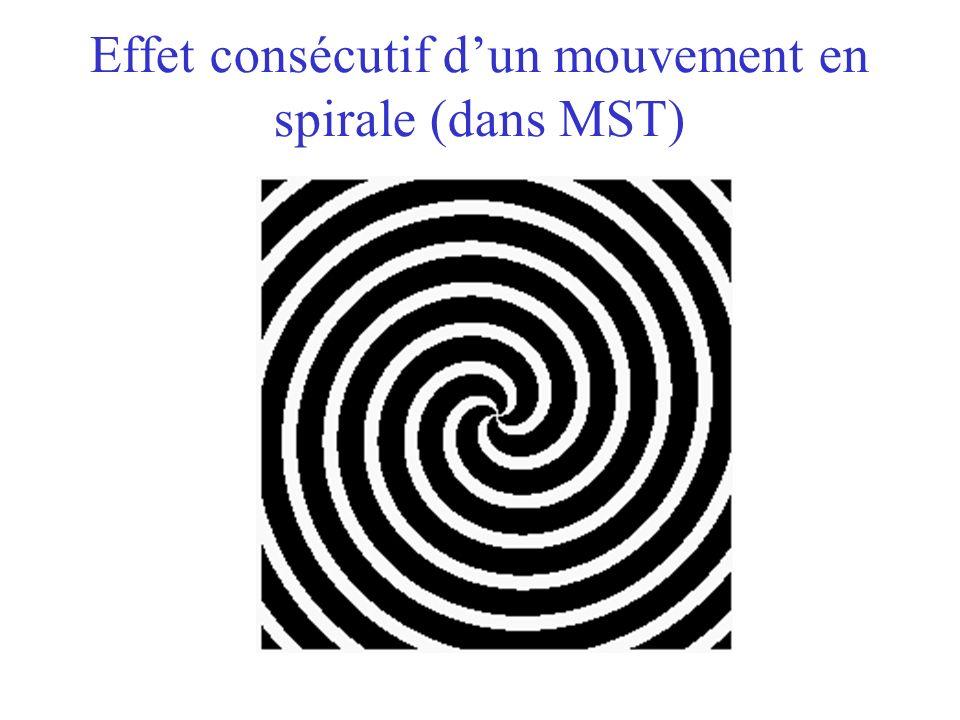 Effet consécutif dun mouvement en spirale (dans MST)