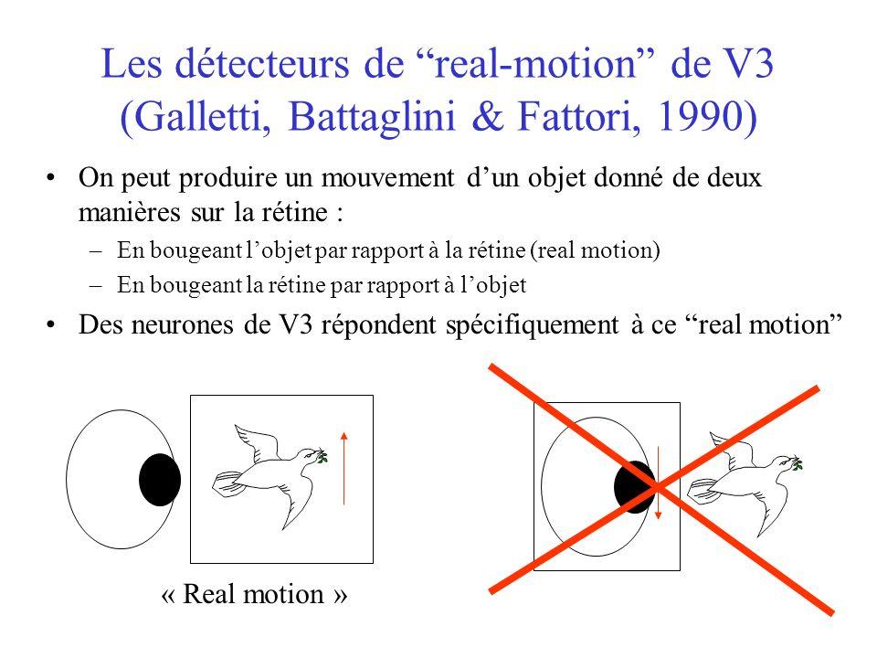 Les détecteurs de real-motion de V3 (Galletti, Battaglini & Fattori, 1990) On peut produire un mouvement dun objet donné de deux manières sur la rétine : –En bougeant lobjet par rapport à la rétine (real motion) –En bougeant la rétine par rapport à lobjet Des neurones de V3 répondent spécifiquement à ce real motion « Real motion »