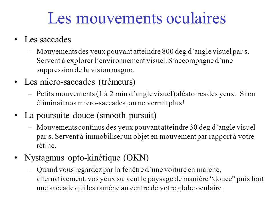 Les mouvements oculaires Les saccades –Mouvements des yeux pouvant atteindre 800 deg dangle visuel par s. Servent à explorer lenvironnement visuel. Sa