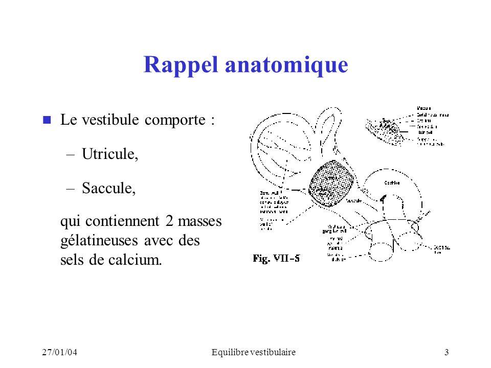 27/01/04Equilibre vestibulaire3 Rappel anatomique Le vestibule comporte : –Utricule, –Saccule, qui contiennent 2 masses gélatineuses avec des sels de