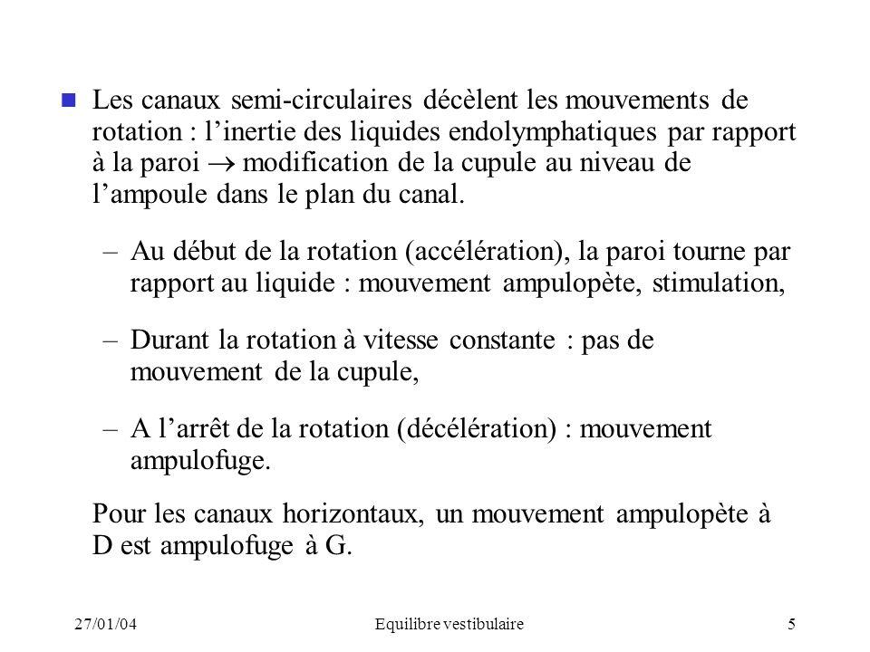 27/01/04Equilibre vestibulaire5 Les canaux semi-circulaires décèlent les mouvements de rotation : linertie des liquides endolymphatiques par rapport à