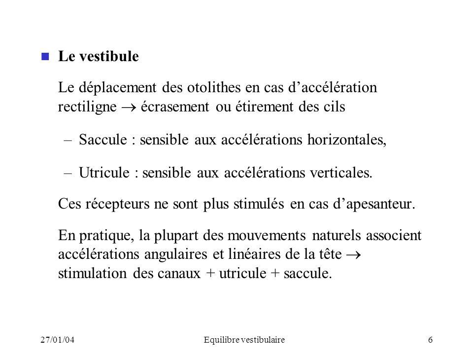 27/01/04Equilibre vestibulaire6 Le vestibule Le déplacement des otolithes en cas daccélération rectiligne écrasement ou étirement des cils –Saccule :