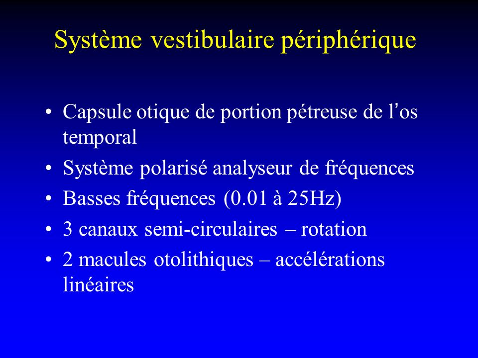 Système vestibulaire Récepteurs sensoriels pour – analyser la position et les mouvements de la tête dans lespace –Adapter la posture –Ajuster la position des yeux (VOR) Chaque récepteur a une orientation spécifique Mouvements linéaires et gravité: utricule et saccule Accélérations angulaires: canaux semi- circulaires Tous les récepteurs ont une rythme de décharge au repos (tonique) +++ Les labyrinthes sont couplés et travaillent en push-pull Le système nerveux central peut se recalibrer