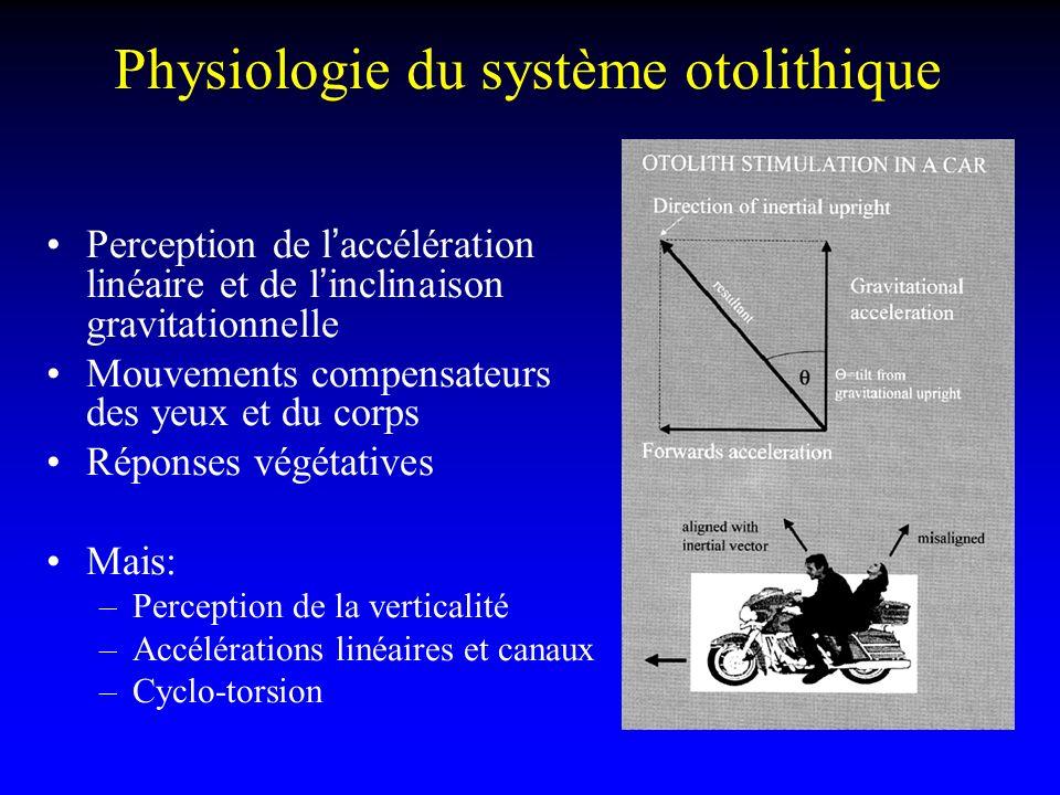 Physiologie du système otolithique Perception de laccélération linéaire et de linclinaison gravitationnelle Mouvements compensateurs des yeux et du co