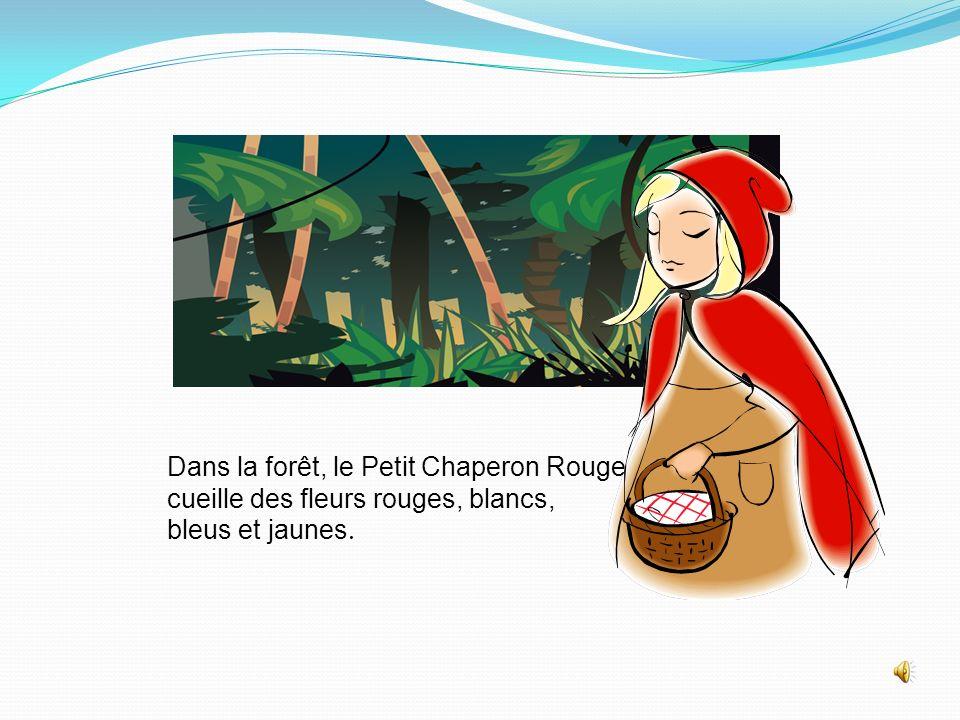 Dans la forêt, le Petit Chaperon Rouge cueille des fleurs rouges, blancs, bleus et jaunes.