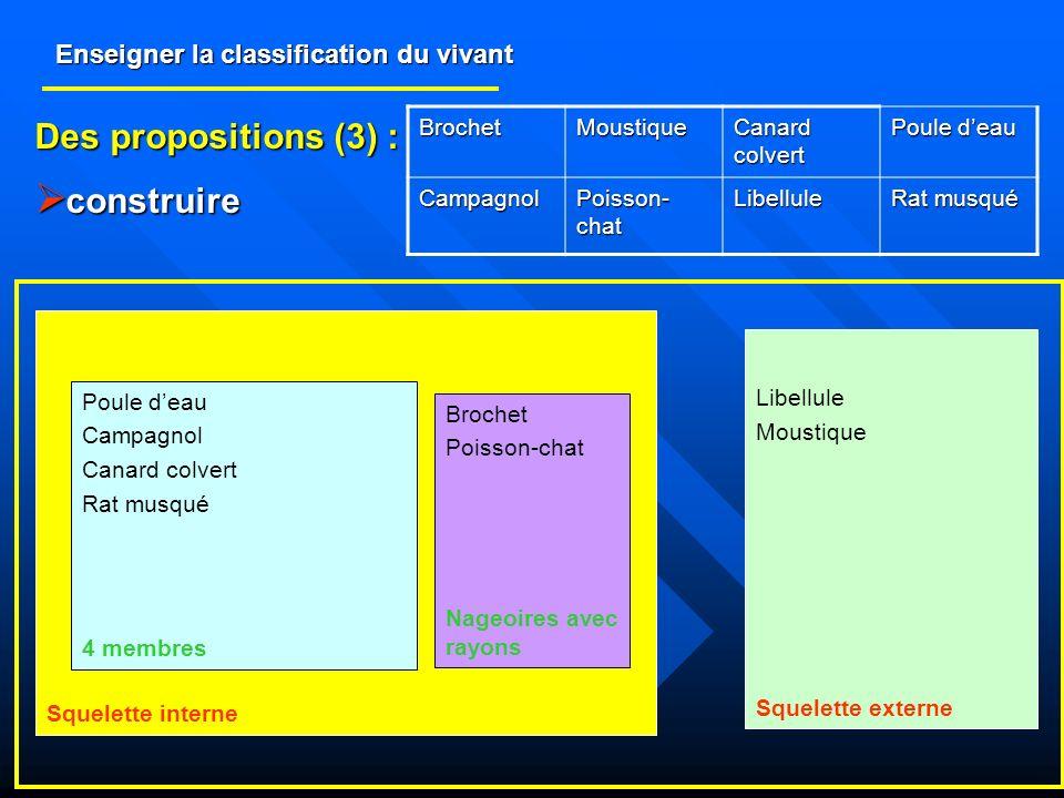 Enseigner la classification du vivant Des propositions (3) : construire construire BrochetMoustique Canard colvert Poule deau Campagnol Poisson- chat