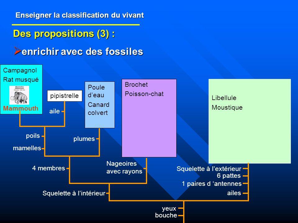 Enseigner la classification du vivant Des propositions (3) : enrichir avec des fossiles enrichir avec des fossiles Libellule Moustique Brochet Poisson