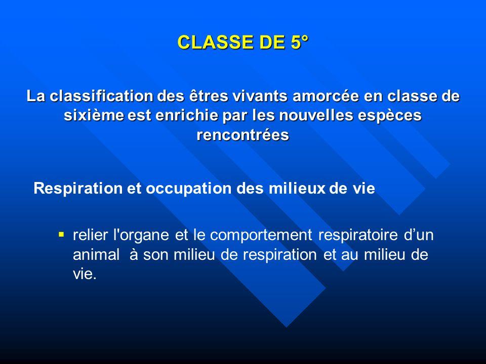 CLASSE DE 5° La classification des êtres vivants amorcée en classe de sixième est enrichie par les nouvelles espèces rencontrées Respiration et occupa