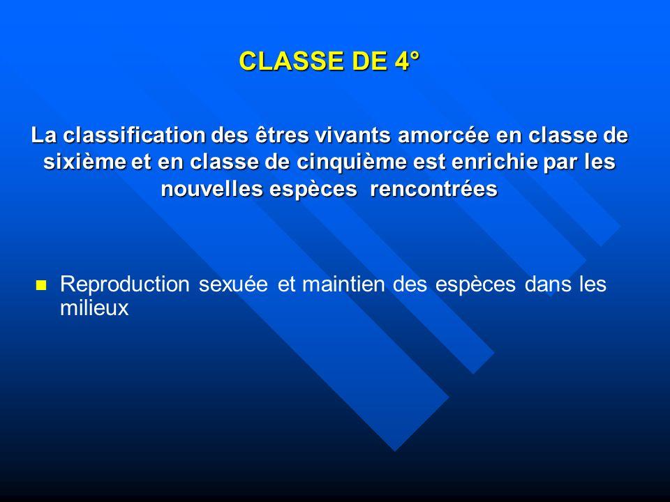 CLASSE DE 4° La classification des êtres vivants amorcée en classe de sixième et en classe de cinquième est enrichie par les nouvelles espèces rencont