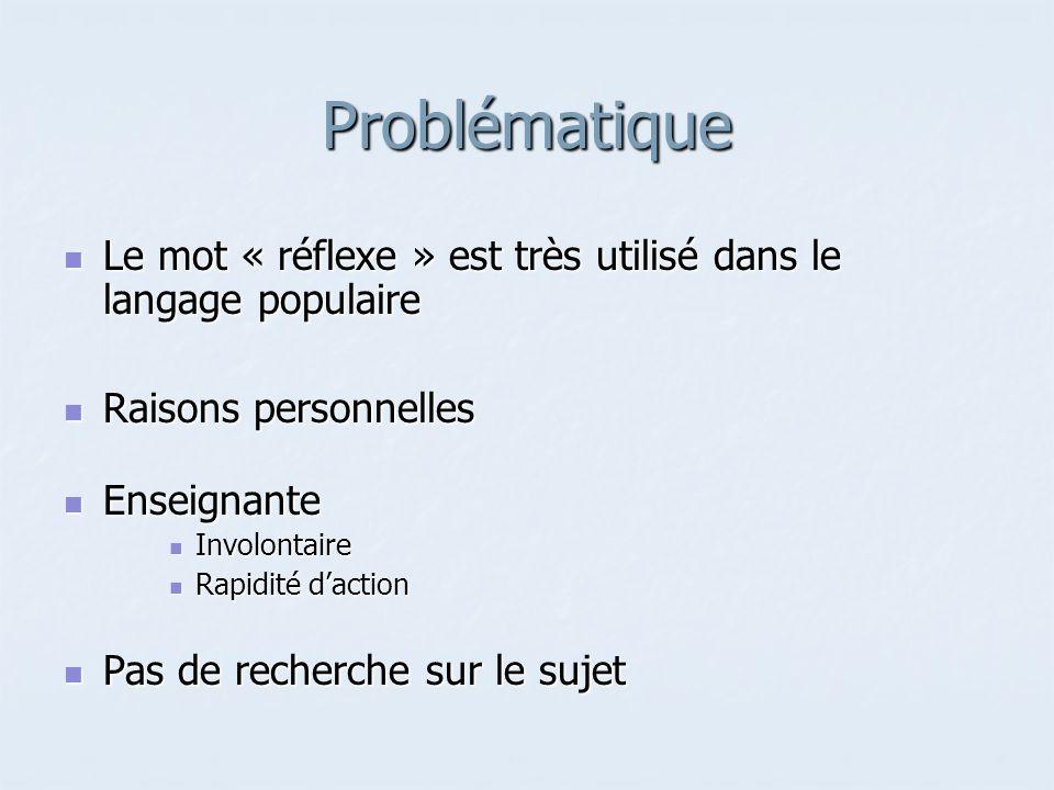 Problématique Le mot « réflexe » est très utilisé dans le langage populaire Le mot « réflexe » est très utilisé dans le langage populaire Raisons pers