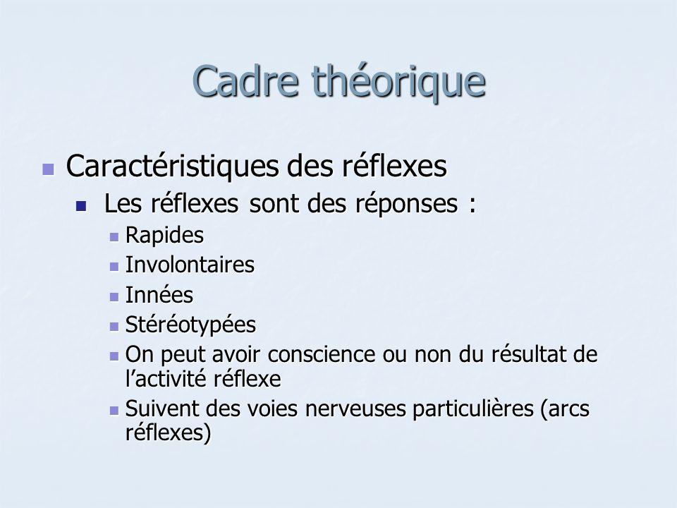 Cadre théorique Caractéristiques des réflexes Caractéristiques des réflexes Les réflexes sont des réponses : Les réflexes sont des réponses : Rapides