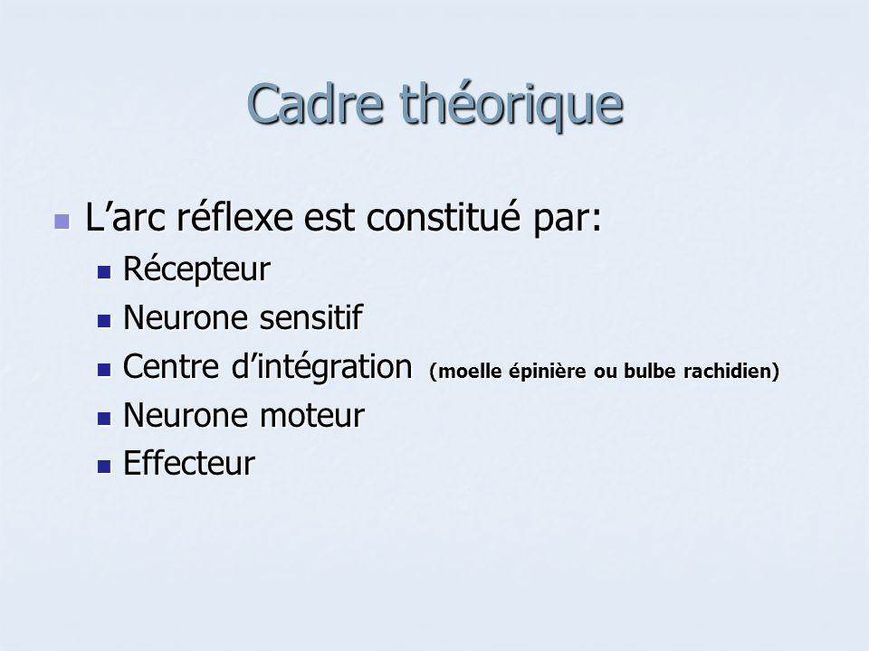 Cadre théorique Larc réflexe est constitué par: Larc réflexe est constitué par: Récepteur Récepteur Neurone sensitif Neurone sensitif Centre dintégrat