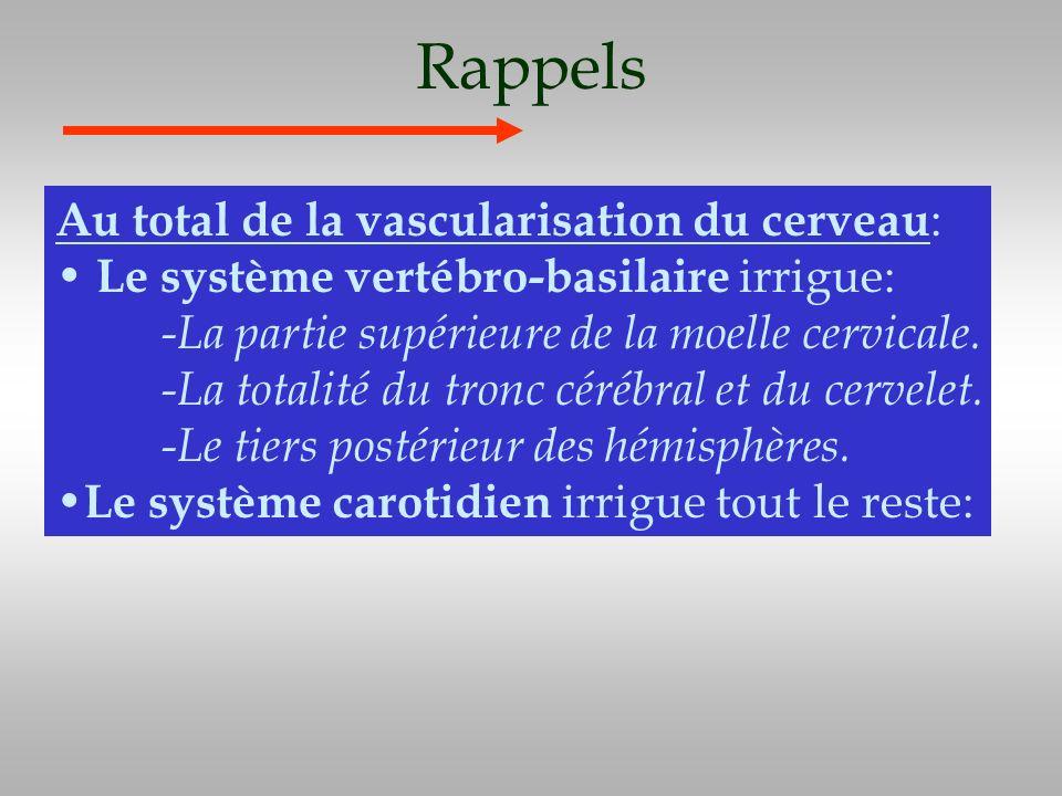 Rappels Au total de la vascularisation du cerveau : Le système vertébro-basilaire irrigue: -La partie supérieure de la moelle cervicale. -La totalité
