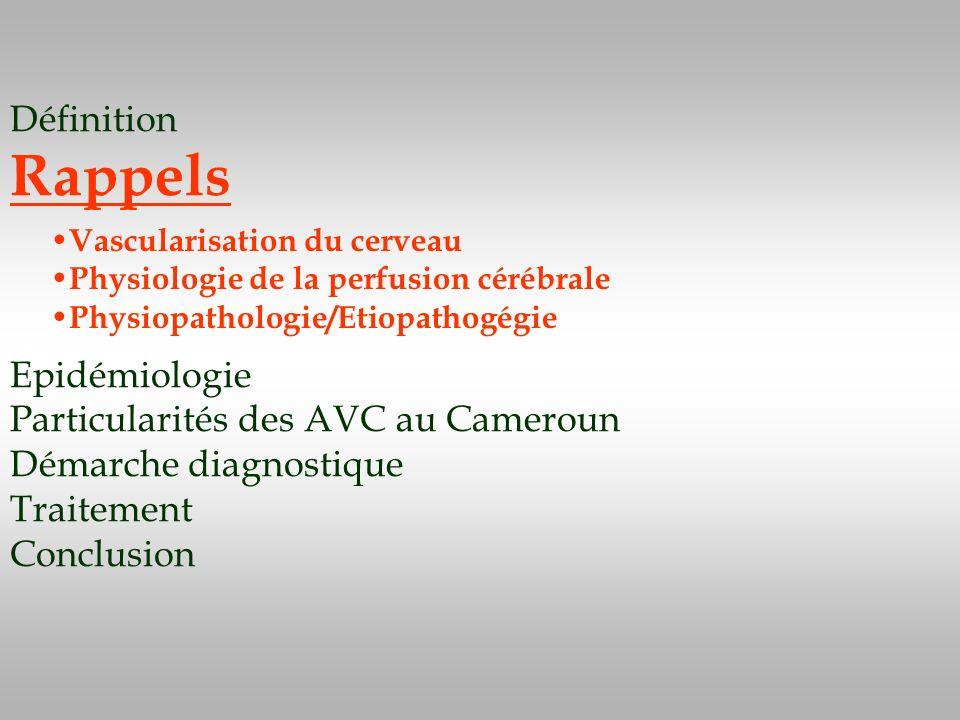 Définition Rappels Epidémiologie Particularités des AVC au Cameroun Démarche diagnostique Traitement Conclusion Vascularisation du cerveau Physiologie