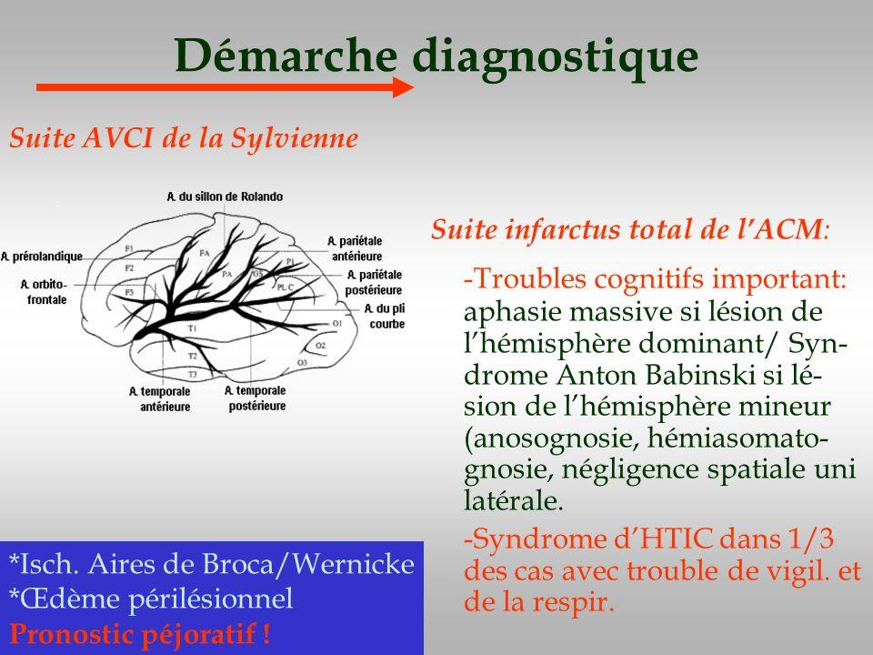Démarche diagnostique Suite infarctus total de lACM : -Troubles cognitifs important: aphasie massive si lésion de lhémisphère dominant/ Syn- drome Ant