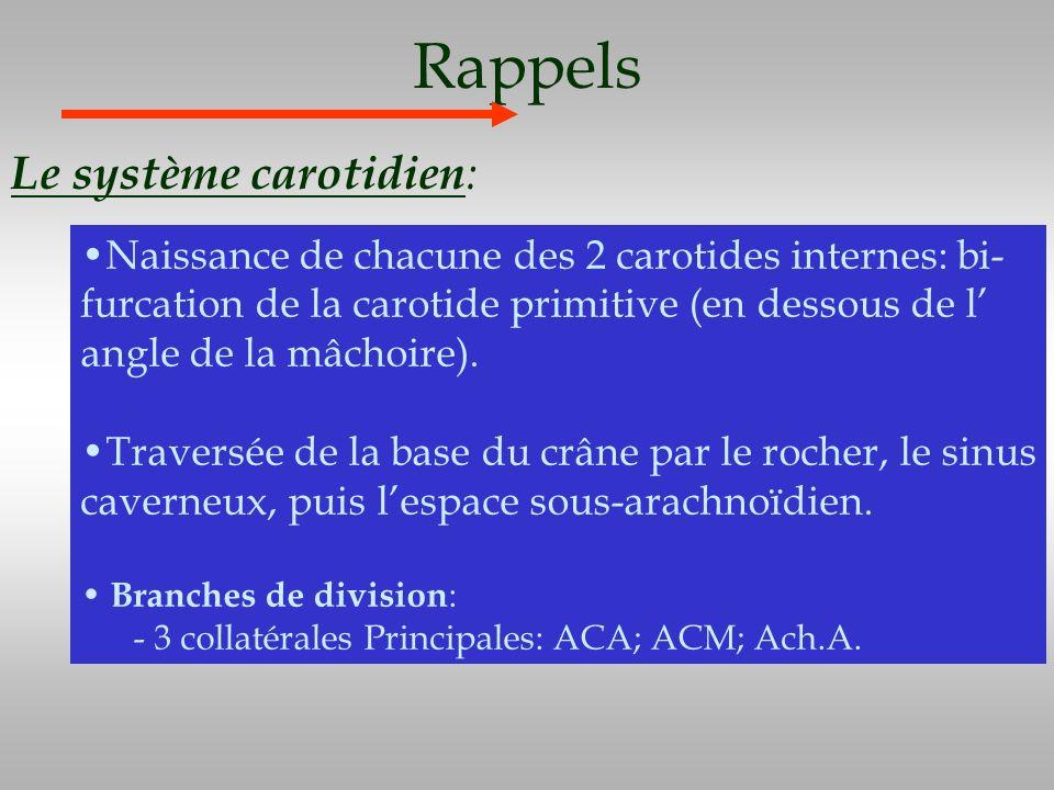 Rappels Le système carotidien : Naissance de chacune des 2 carotides internes: bi- furcation de la carotide primitive (en dessous de l angle de la mâc