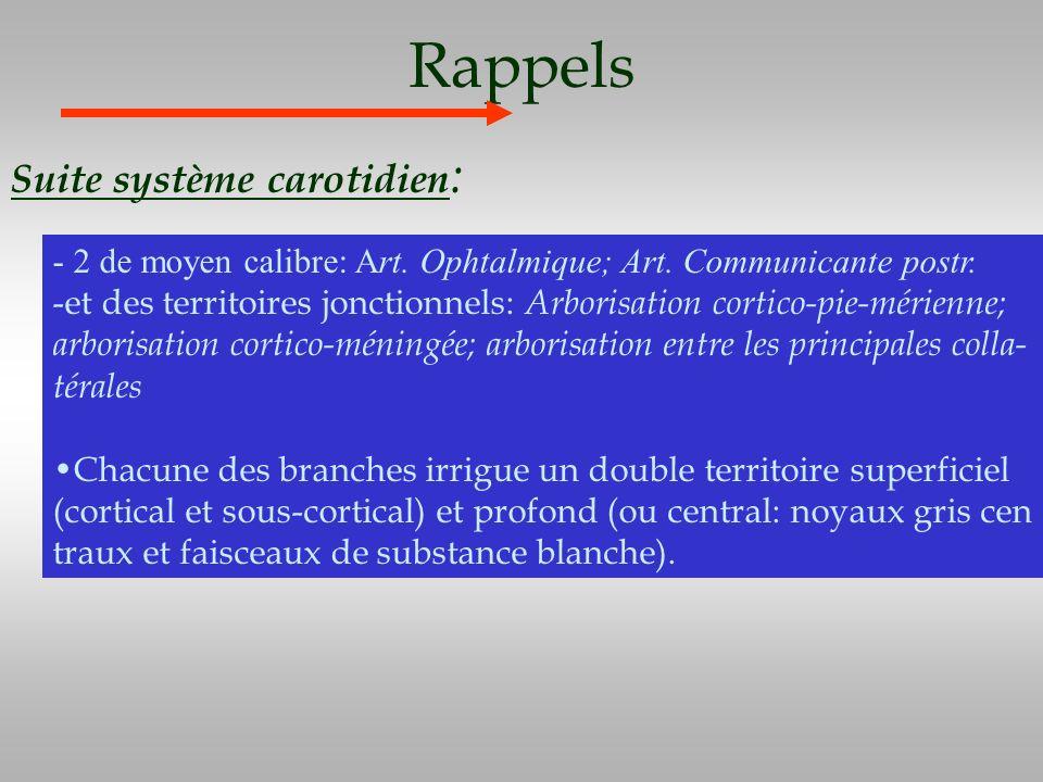 Rappels Suite système carotidien : - 2 de moyen calibre: Art. Ophtalmique; Art. Communicante postr. -et des territoires jonctionnels: Arborisation cor