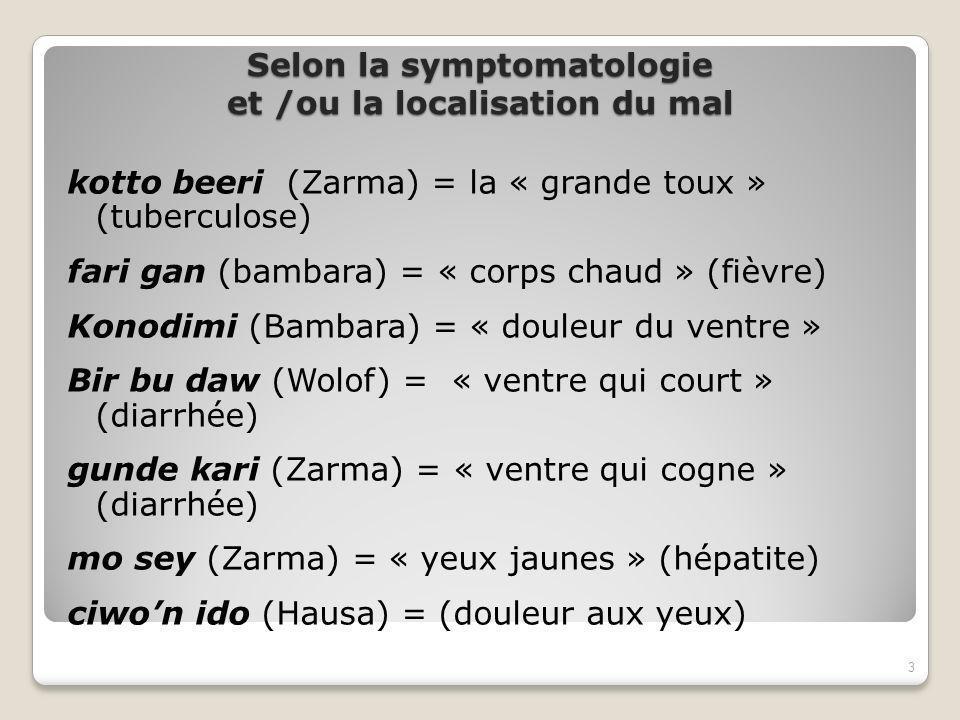 Selon la symptomatologie et /ou la localisation du mal kotto beeri (Zarma) = la « grande toux » (tuberculose) fari gan (bambara) = « corps chaud » (fièvre) Konodimi (Bambara) = « douleur du ventre » Bir bu daw (Wolof) = « ventre qui court » (diarrhée) gunde kari (Zarma) = « ventre qui cogne » (diarrhée) mo sey (Zarma) = « yeux jaunes » (hépatite) ciwon ido (Hausa) = (douleur aux yeux) 3
