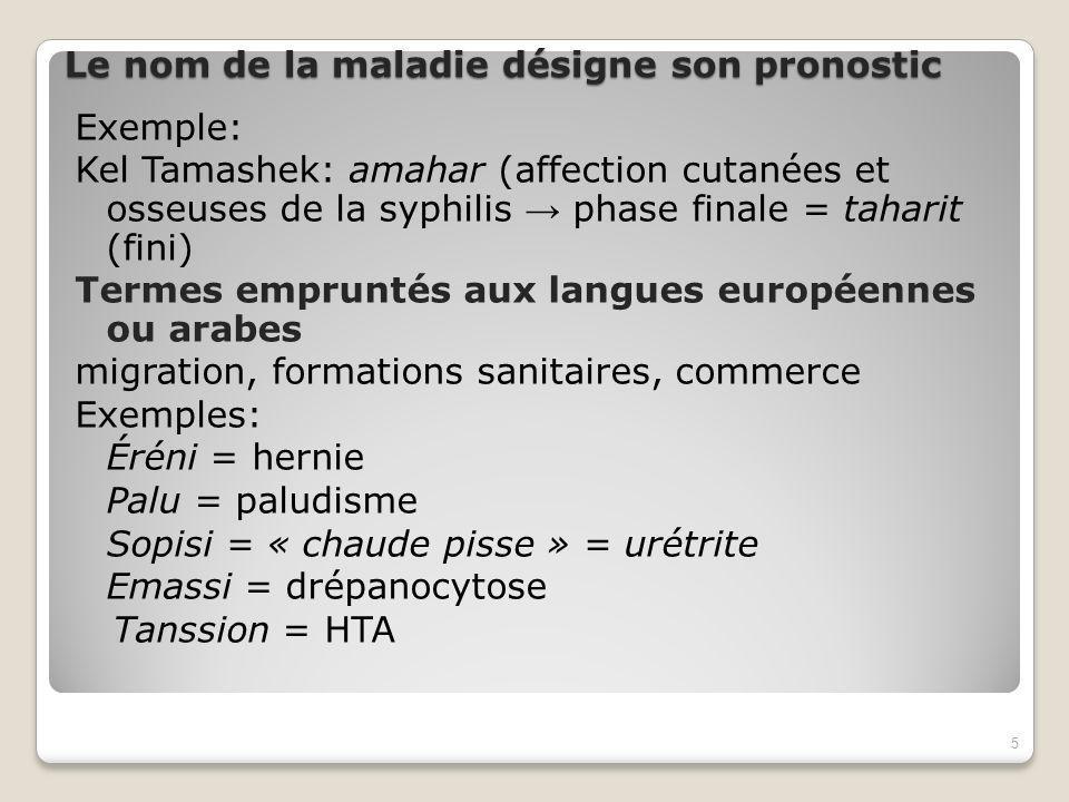 Le nom de la maladie désigne son pronostic Exemple: Kel Tamashek: amahar (affection cutanées et osseuses de la syphilis phase finale = taharit (fini) Termes empruntés aux langues européennes ou arabes migration, formations sanitaires, commerce Exemples: Éréni = hernie Palu = paludisme Sopisi = « chaude pisse » = urétrite Emassi = drépanocytose Tanssion = HTA 5