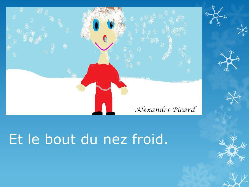 Et le bout du nez froid. Alexandre Picard