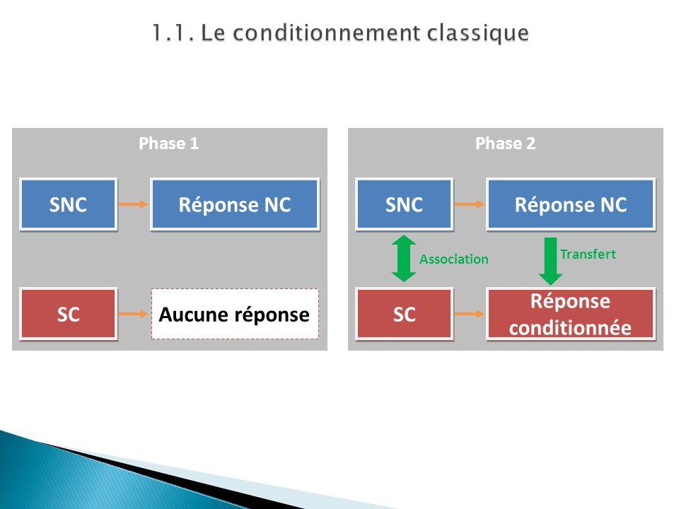 Phase 1 SNC Réponse NC SC Aucune réponse Phase 2 SNC Réponse NC SC Réponse conditionnée Association Transfert