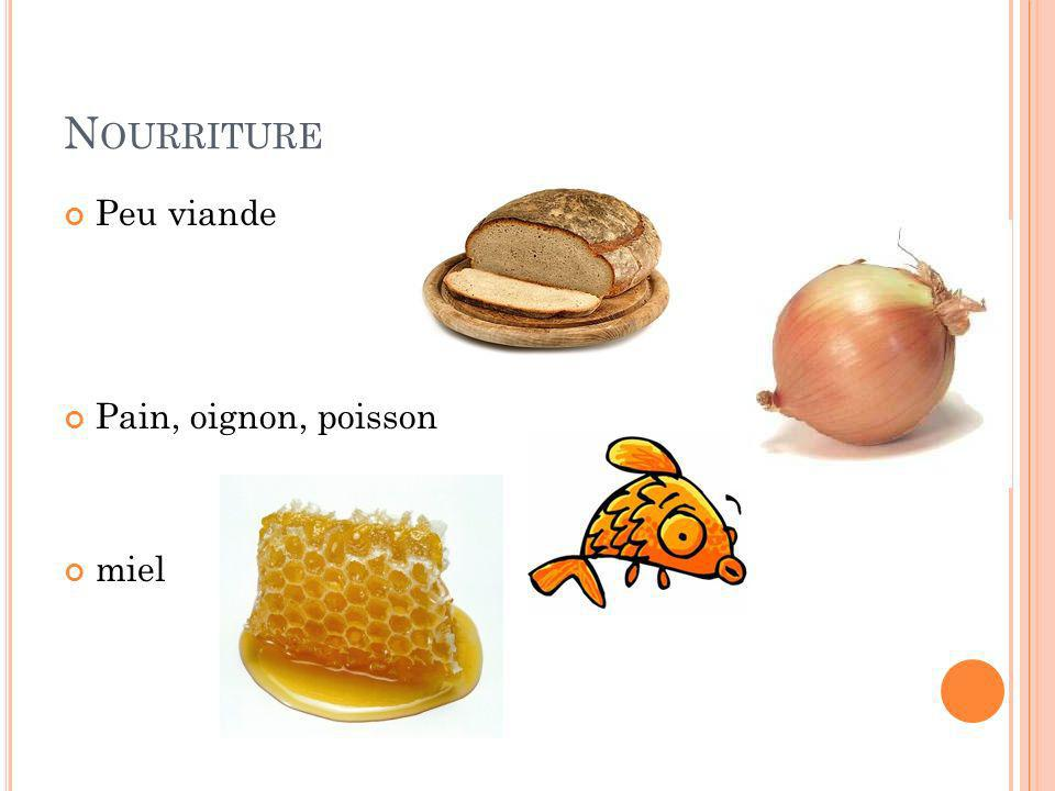 N OURRITURE Peu viande Pain, oignon, poisson miel