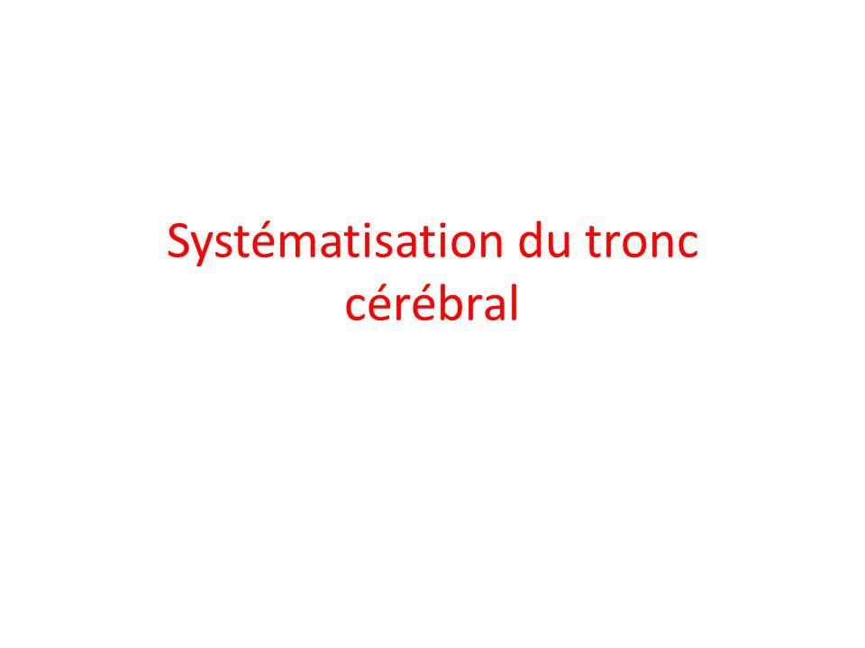 b- Les voies provenant du tronc cérébral : - Les voies de la sensibilité des nerfs crâniens : Le deuxième neurone des noyaux du trijumeau (V) décusse, forme le lémnisque trijéminal et gagne le thalamus.