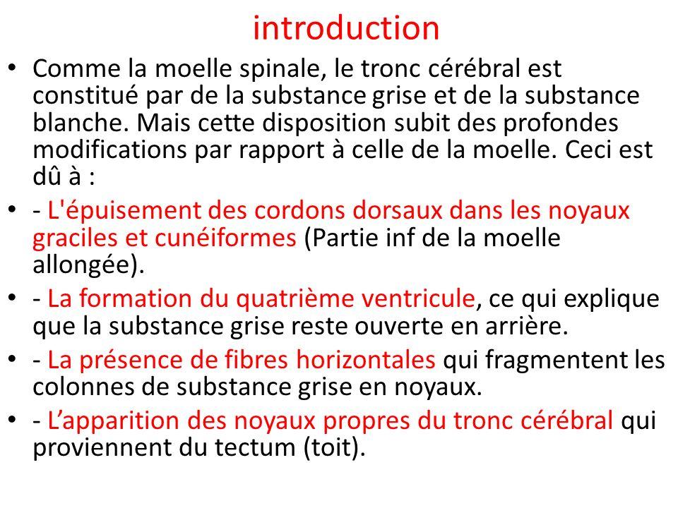 A- La substance grise 1- Les noyaux des nerfs crâniens (de la IIIème à la XIIème paire) Ils sont disposés en six colonnes : a- Colonne de la motricité somatique dorsale, b-Colonne de la motricité somatique ventrale, c-Colonne de la viscèro-motricité, d-Colonne de la viscèro-sensibilité, e-Colonne de la sensibilité somatique proprioceptive f-Colonne de la sensibilité somatique extéroceptive.