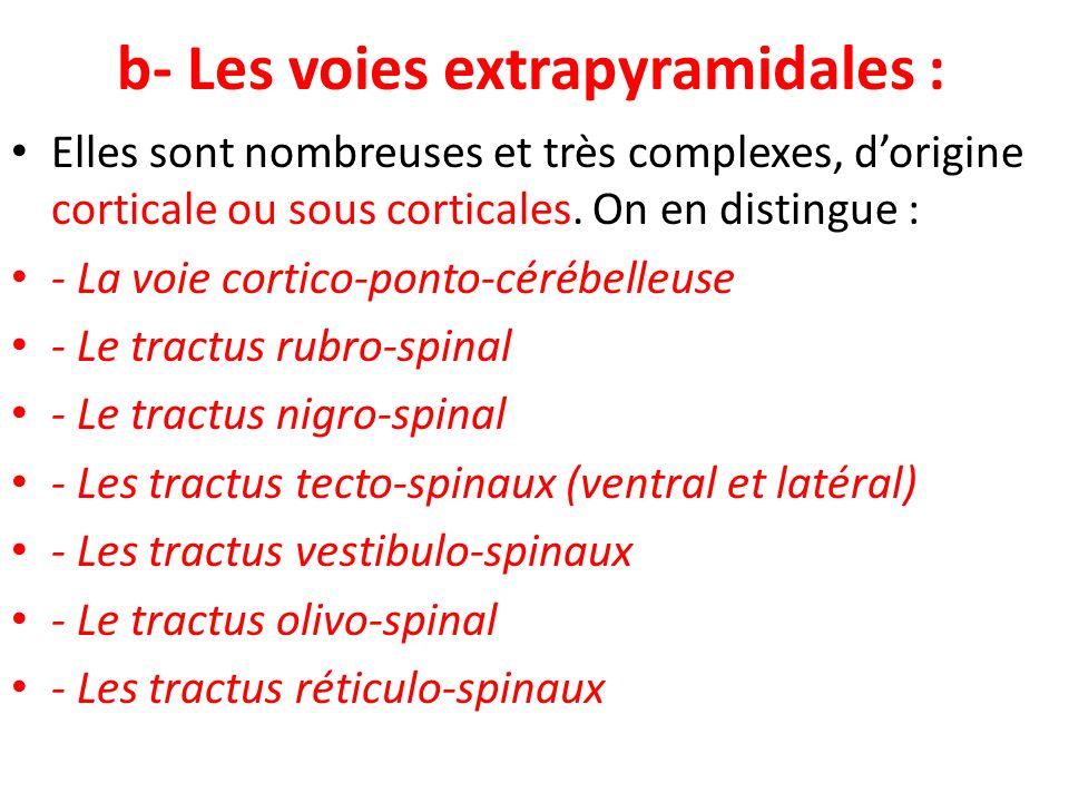b- Les voies extrapyramidales : Elles sont nombreuses et très complexes, dorigine corticale ou sous corticales. On en distingue : - La voie cortico-po