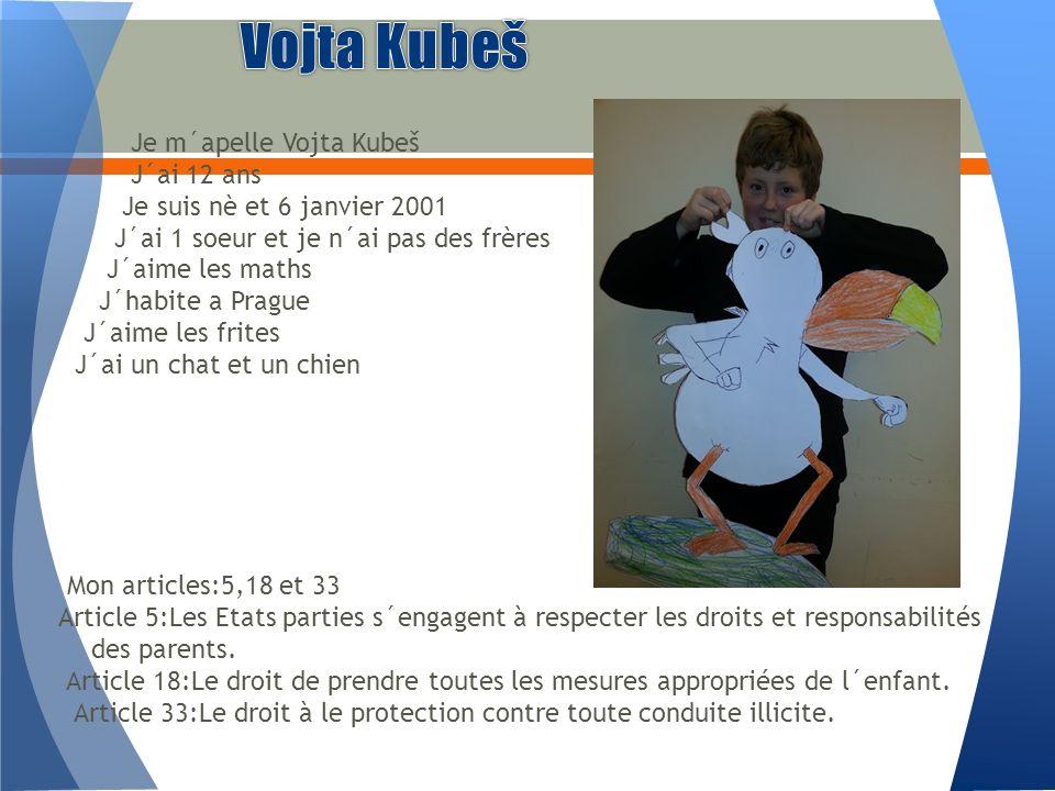 Je m´apelle Vojta Kubeš J´ai 12 ans Je suis nè et 6 janvier 2001 J´ai 1 soeur et je n´ai pas des frères J´aime les maths J´habite a Prague J´aime les