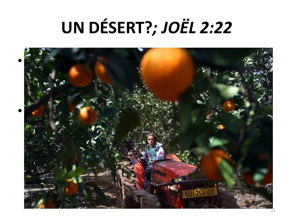 UN DÉSERT?; JOËL 2:22 22 21 Terre, ne crains point ; égaye–toi et réjouis–toi ! Car lÉternel a fait de grandes choses. 22 Ne craignez pas, bêtes des c