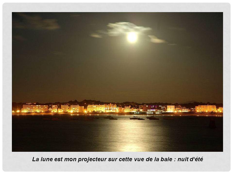 La lune est mon projecteur sur cette vue de la baie : nuit dété